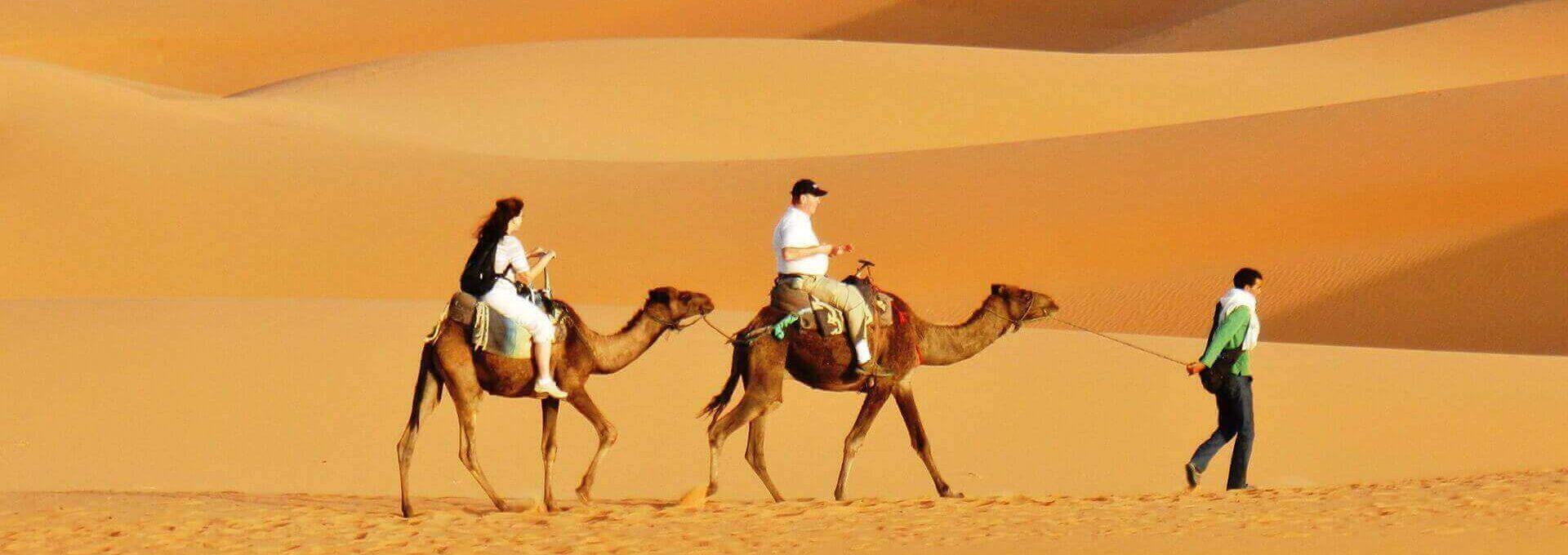 Agenzia di Viaggio e Vacanze